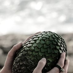 A dragon egg