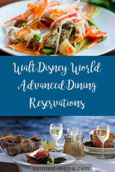 How to Plan a Florida Vacation! – 6 Months To Go – ADR Time – Spirited Mama Disney World Food, Disney World Parks, Disney World Planning, Walt Disney World Vacations, Disney World Tips And Tricks, Disney Tips, Florida Vacation, Florida Travel, Best Disney Restaurants
