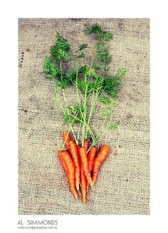 First questin have you ever woken up and wondered what life would be like if you were a carrot?