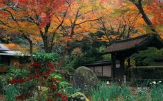 鎌倉で一番紅葉が遅い場所!「瑞泉寺」の紅葉は絶対に見逃せない   RETRIP