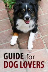 More DIY Dog Booties - great for Service dogs/Therapy dogs who go from hot pavement to slippery tile floors.