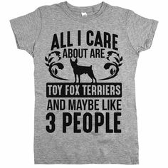 'All I Care About Are Toy Fox Terriers'