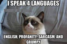 Yes, I'm multi-lingual...