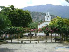 Occidente-Olaya  Antioquia-Colombia