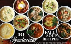 10 ideas for fall soups: broccoli cheese, minestrone, balsamic beef, basic chili, butternut squash, clam chowder, etc.