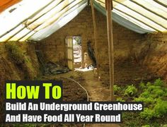 Can't afford a glass greenhouse? Check out how to build your own underground greenhouse for cheaper and for growing food 365 days a year, even in cold. Greenhouse Growing, Greenhouse Gardening, Gardening Tips, Organic Gardening, Greenhouse Ideas, Cheap Greenhouse, Winter Greenhouse, Greenhouse Attached To House, Cold Climate Gardening