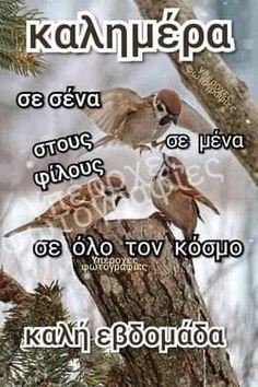 Good Morning Funny, Morning Humor, Greek Quotes, Wish, Spirituality, Happy, Spiritual, Ser Feliz, Being Happy