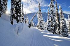 A winter weekend in Whitefish, MT. Discover an uncrowded ski destination.