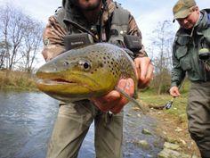 Pennsylvania Fly Fishing Trip: Fall 2012 | BestGear