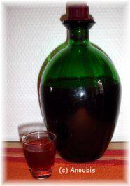 Leicht herbes Konzentrat aus Schlehen, welches toll in Mineralwasser oder auch in heissem Tee schmeckt ;-)
