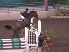 My all time favorite horse video on youtube: this girl loses her stirrups at the start of her round when her horse bucks, and she just kept going! LIKE A BOSS.