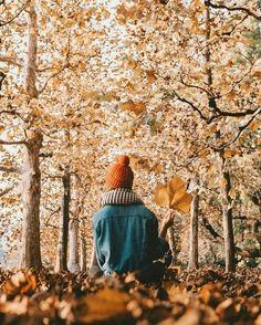 autumn #autumn