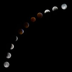 Beautiful lunar eclipse progression.  Sad I only managed to wake up for the middle bit...