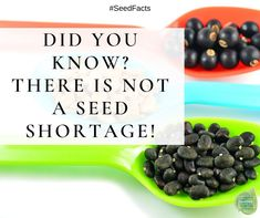 Despite what you read and hear, there is not a seed shortage right now. There is a high demand, which is wonderful. Seed companies, like many other businesses impacted by the COVID pandemic, are short staffed while trying to fulfill orders that are many times the norm. Please be patient! Shop our NGB members for all your gardening needs Seed Catalogs, Growing Seeds, Grow Your Own Food, Different Flowers, Garden Seeds, Unique Recipes, Garden Planning, Gardening Tips, Advice