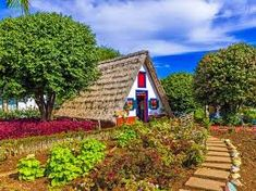 Image result for most colorful buildings in madeira portugal