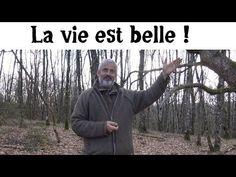 Hervé Coves et les Champignons