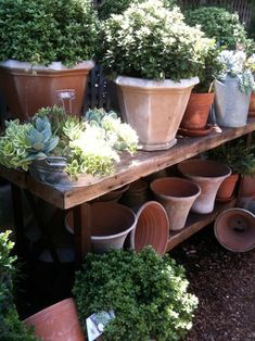 an old table with pots :) think this would be good for the herbs :)