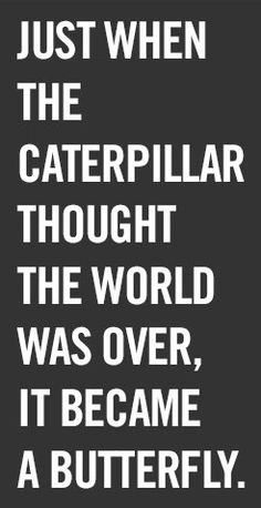 The caterpillar thought the world was over it became a butterfly. -