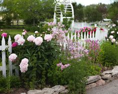 from Meadowbrook Farm blog. beautiful flowers, fence, photography