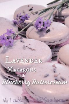 How To Make Lavender Macarons With Blueberry Buttercream Lavender Macarons with blueberry buttercream. Lavender and blueberries complement each other nicely. Click through for these easy recipes! Baking Recipes, Cookie Recipes, Dessert Recipes, Easy Recipes, Oven Recipes, Dinner Recipes, Macaron Filling, Macaron Recipe, Macaron Cake