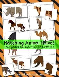 Animal Halves Printable Activity Great for distributing to students to find their pairs/partners ! - Matching Animal Halves Free PrintablePrintable Printable (noun: printability) usually refers to something suitable for printing: Educational Activities, Toddler Activities, Preschool Activities, Zoo Animal Activities, Creative Activities, Dear Zoo Activities, Preschool Printables, Animal Games, Preschool Learning