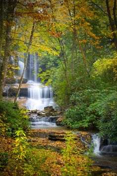 Best Waterfalls Smoky Mountains | ... stream courses through the Great Smoky Mountains in North Carolina