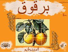 Découvrir les mots français d'origine arabe.   http://education.francetv.fr/activite-interactive/decouvrir-les-mots-francais-d-origine-arabe-o13325