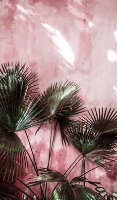 Ambiance estivale ! nicolas villani Shop : 45 Avenue Marceau 75116 paris E-shop : nicolasvillani.fr #estivale #ambiance #création #nicolasvillani #45avenuemarceau #fashion #style #parisian