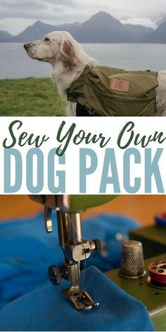 diy dog Sew Your Own Dog Pack If none of the commercially available dog packs strikes your fancy (or if theyre too expensive), try putting together your own using the pattern and directions provided below. Dog Commands Training, Basic Dog Training, Bull Terriers, Yorkshire Terrier, Yorkie, Education Canine, Dog Backpack, Dog Crafts, Cool Ideas