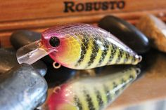 US $3.99 New other (see details) in Sporting Goods, Fishing, Baits, Lures & Flies