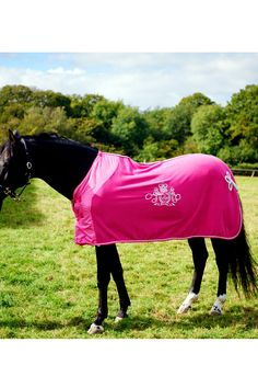 43 Best Horse rugs images in 2014 | Horse rugs, Horses