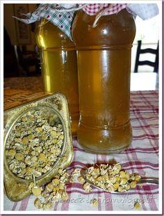 Le Ricette della Nonna: Bevanda fresca alla camomilla Beverages, Mint