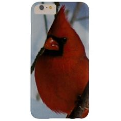 Cardinal, iPhone 6 Plus Case. Barely There iPhone 6 Plus Case