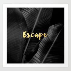 black and white, gold, escape, banana leaf...