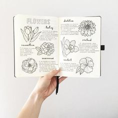 If you're new to the bullet journaling community or are just looking for some inspiration here are 10 awesome Instagram accounts that you should go and follow (if you aren't already!) @showmeyourplanner One of my personal favorites for all things planner/bujo inspiration. I go there for fresh ideas and new people to follow for further inspiration. Bree   @breeeberry Bree has some of the cutest layouts and