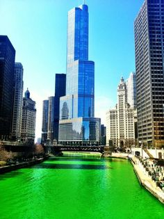 St. Patrick's Day ~ Chicago   I miss it there!!!! Wish I was there this year again sooo much fun!