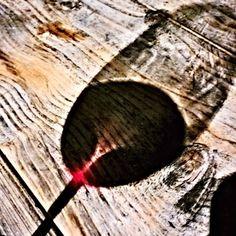 luci e ombre del vino