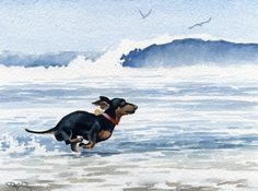 DACHSHUND At The BEACH Dog Watercolor by Artist DJ Rogers