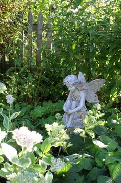 Fairy looking after the garden