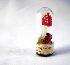 Faerie Toadstool and Ladybug Specimen under glass. Tag reads: No. 036.12 - Went for a treat from the cookie jar and discovered this instead! - Nichola Battilana