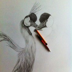 Pencil drawing crowned cranes   • mariellevanleeuwen@live.nl • AR•T•INT • www.facebook.com/artintx • instagram @artint