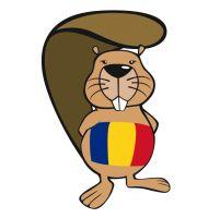 Bebras - Rezultatele finale ale celui mai mare eveniment de gândire computaţională pentru elevi • ECDL - Romania