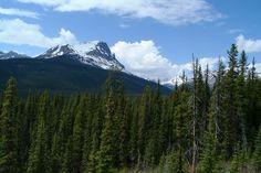 Banff National Park, Alberta, Canada (June 4, 2008).