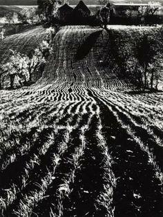"""Mario Giacomelli, """"La terra"""", 1955 – 1968 - """"Mario Giacomelli. Fotografie dall'Archivio di Luigi Crocenzi"""" [Mario Giacomelli. Photographs from Luigi Crocenzi's archives], exhibition @ Museo di Roma in Trastevere"""