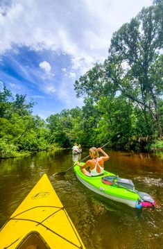 Planning to visit Florida? Monticello is a cool place near Tallahassee with adventure like kayaking, airboat rides, wildlife experiences. Plus great food and charming downtown. Here are the 14 best things to do in Monticello Florida for your Florida vacation! #Monticello #Florida #kayaking #Floridatravel #familytravel #travel #adventuretravel Visit Florida, Florida Vacation, Florida Travel, Usa Travel, Family Road Trips, Family Travel, Monticello Florida, Airboat Rides, Vacations In The Us