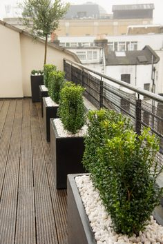 FIND OUT: The Best Modern Rooftop Garden Design Ideas Including Useful Tips Here Related posts:Fundamenta - Home & Solutions Popular And Beautiful Rooftop Garden 0454 images with plants for roof terrace - . Roof Terrace Design, Rooftop Design, Balcony Design, Garden Design, Balcony Planters, Outdoor Planters, Garden Planters, Balcony House, Metal Planters