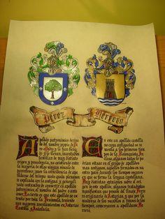 escudos heraldicos acolados de Perez y Herrero
