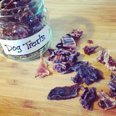 Make your dog homemade, healthy treats!!! Really easy!