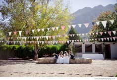 Bunting - Lean and Kobus by Jani B photgraphy