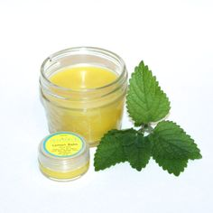 Organic, Anti Viral Lemon Balm Salve for healing and preventing herpes cold sores. This natural, lemon balm herbal salve may also help to heal sores associated with chicken pox, shingles, hand foot and mouth, and other viruses in the herpes virus family.